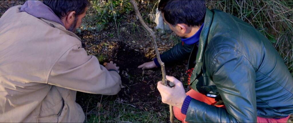 Op zoek naar de truffel